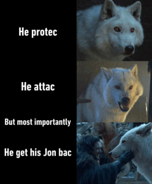 Good boi got his pats: He protec  He attac  But most importantly  He get his Jon bac Good boi got his pats