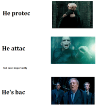 He Protec: He protec  He attac  but most importantly