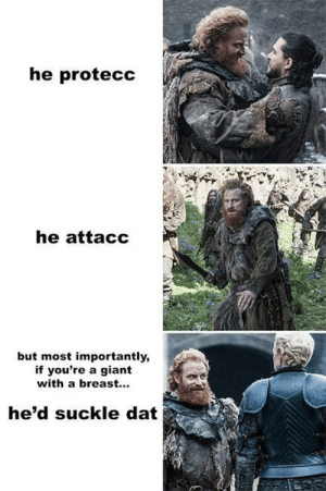 But Most Importantly: he protecc  he attacc  but most importantly,  if you're a giant  with a breast...  he'd suckle dat