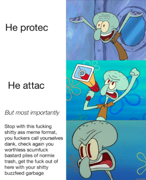 Ass, Dank, and Fucking: He proted  He attac  But most importantly  Stop with this fucking  shitty ass meme format,  you fuckers call yourselves  dank, check again you  worthless scumfuck  bastard piles of normie  trash, get the fuck out of  here with your shitty  buzzfeed garbage He protec lmao XD