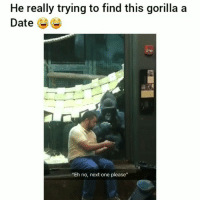 """Funny, Tinder, and Date: He really trying to find this gorilla a  Date  """"Eh no, next one please"""" Lnao gorilla swipping left on tinder 😂😑😂💀😁 HoodClips"""