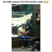 """Memes, Twitter, and Date: He really trying to find this Gorilla a date  """"Eh no, next one please"""" Accurate! 😂 Credit: sierra_2015 (twitter)"""