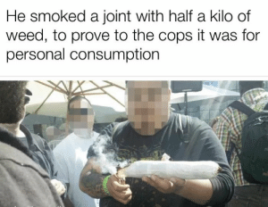 Tip: how not to get arrested carrying weed: He smoked a joint with half a kilo of  weed, to prove to the cops it was for  personal consumption Tip: how not to get arrested carrying weed