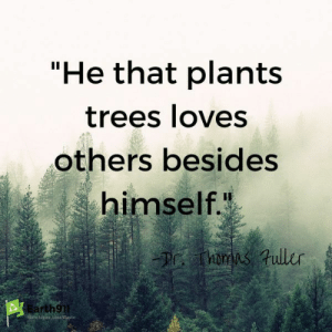 """According to the environmental quote I need to go plant a few trees.: """"He that plants  trees loves  others besides  himself.  h9  debs, Less Wagte According to the environmental quote I need to go plant a few trees."""