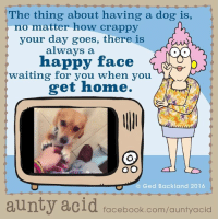 I know that feeling..: he thing about having a dog is,  no matter how crappy  your day goes, there is  always a  happy face  G  waiting for you when you  get home.  (C) Ged Backland 2016  aunty acid  facebook.com/auntyacid I know that feeling..