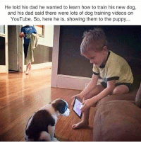 Dad, Dogs, and Friends: He told his dad he wanted to learn how to train his new dog,  and his dad said there were lots of dog training videos on  YouTube. So, here he is, showing them to the puppy... There will be a quiz later.... 😂 🐶 😍 ❤ Thanks for following. Sharing is caring! Tag your friends @funpawcare Go to my website www.funpawcare.com for free expert cat and dog training, behavior, nutrition and pet care articles and sign up for our newsletter and blog, link in bio. All social media pages are current and listed on website ------ dogtraining training ethology aba appliedbehavior positivereinforcement nutrition canine canines puppylove dogwalking dogpark doglover puppies puppy pupper puppers puppiesofinstagram dogstagram perro dogs dog vegan love dogsofinstagram youtube learn learning