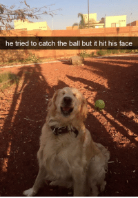 Face, Ball, and Hit: he tried to catch the ball but it hit his face