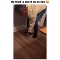 He almost had it bruh 😅😹: He tried to stand on an egg He almost had it bruh 😅😹