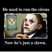 Memes, Run, and 🤖: He used to run the circus  Now he's just a clown.