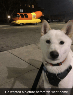 Oscar Meyer, Home, and A Picture: He wanted a picture before we went home On the walk to the dog park he spotted an Oscar Meyer wiener car