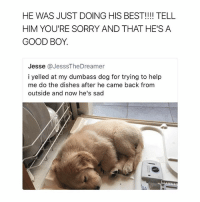 Sorry, Best, and Good: HE WAS JUST DOING HIS BEST!!!! TELL  HIM YOU'RE SORRY AND THAT HE'S A  GOOD BOY.  Jesse @JesssTheDreamer  i yelled at my dumbass dog for trying to help  me do the dishes after he came back from  outside and now he's sad you don't need a partner if you got a dog