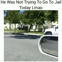Jail, Lmao, and Memes: He Was Not Trying To Go To Jail  Today Lmao No fucks given😂💀 Turn on post notifications🆕