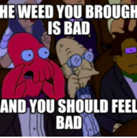 You Should Feel Bad: HE WEED YOU BROUGH  IS BAD  AND YOU SHOULD FEEL  BAD