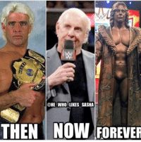 Memes, Wrestling, and World Wrestling Entertainment: @HE WHO LIKES SASHA  THEN NOW FOREUER Congrats to the nature boy ric flair for being awarded with the yearly Wrestlemania statue that will immortalize his greatness forever! wwe wwememe wwememes ricflair natureboy wwechampion hulkhogan ultimatewarrior andrethegiant wrestler wrestling wrestlemania wrestlemania33 wwehof worldchampionshipwrestling tripleh batista randyorton wrestler wrestling prowrestling professionalwrestling worldwrestlingentertainment wwf worldwrestlingfederation wweuniverse wwenetwork wwesuperstars raw mondaynightraw smackdown smackdownlive