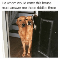 Memes, Reddit, and House: He whom would enter this house  must answer me these riddles three  adam the creator Follow @satan right now! Get him to 1 mil and he will grant you 3 wishes! (pic via Reddit by Faze_Senpai)