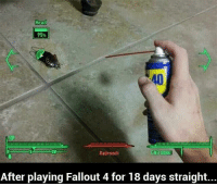 Fallout 4, Head, and Memes: Head  95%  CND  Radroach  After playing Fallout 4 for 18 days straight... When you see it 😩😩