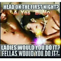 HEAD ON THE FIRST NIGHT  LADIESWOULDYOUDOIT  FELLAS WOULDYOU DO IT? question ladies girls tag tags tagsomeone like likes sex sexmemes meme memes dankmemes lol lmao lmfao