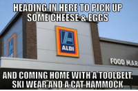 Memes, Aldi, and Hammock: HEADING IN HERE TO PICK UP  SOME CHEESE RECCS  ALDI  FOOD MAR  AND COMING HOME WITH A TOOLBELT  SKI WEAR AND A CAT HAMMOCK Look, we've all been there.