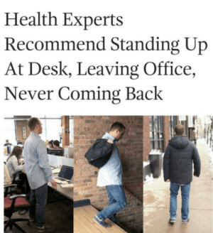 meirl: Health Experts  Recommend Standing Up  At Desk, Leaving Office,  Never Coming Back meirl