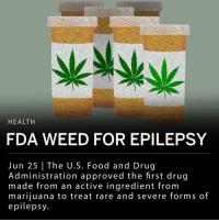 "Food, Memes, and Weed: HEALTH  FDA WEED FOR EPILEPSY  Jun 25 The U.S. Food and Drug  Administration approved the first drug  made from an active ingredient from  mariiuana to treat rare and severe forms of  epilepsy The Food and Drug Administration approved the first drug that contains an active ingredient from marijuana to treat rare, severe forms of epilepsy. The drug, called Epidiolex (cannabidiol) is an oral solution, and contains CBD, the chemical component of the Cannabis sativa (marijuana) plant. CBD does not cause intoxication or the ""high"" that comes from tetrahydrocannabinol (THC). ___ FDA Commissioner Scott Gottlieb, M.D. said in a statement: - ""This approval serves as a reminder that advancing sound development programs that properly evaluate active ingredients contained in marijuana can lead to important medical therapies. And, the FDA is committed to this kind of careful scientific research and drug development."""