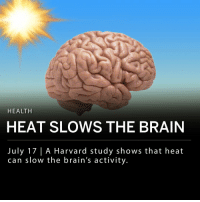 "Brains, Memes, and Summer: HEALTH  HEAT SLOWS THE BRAIN  July 17 | A Harvard study shows that heat  can slow the brain's activity A study shows that summer heat can slow the brain. Joe Allen, co-director of the Center for Climate, Health and the Global Environment at Harvard conducted a study comparing the performance of students in an air-conditioned dorm with student in a non-air-conditioned dorm. Tests including basic math found that the students in the building with no AC performed worse than the students living with AC. ___ A press release from Harvard noted that ""understanding the effects of indoor temperatures is important given that adults in the U.S. spend 90% of their time indoors."""