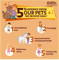 Our animal companions make our lives better in more ways than one. http://bit.ly/2tKTxRM: Healthy  pets  With Dr. Karen Becket  HealthyPets.Mercola.com  BLESSINGS FROM  OUR PETS  WE RECEIVE DAILY  Unconditional  love  Friendship  13  Improved mental  and physical health  Relief from  stress  Living in the  moment Our animal companions make our lives better in more ways than one. http://bit.ly/2tKTxRM