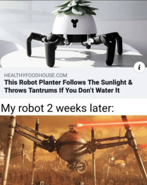 *laser sounds*: HEALTHYFOODHOUSE.COM  This Robot Planter Follows The Sunlight &  Throws Tantrums If You Don't Water It  My robot 2 weeks later: *laser sounds*
