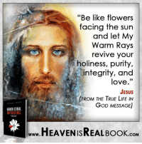 """We have to allow God to purify us! http://www.tlig.org/en/messages/1149/: HEAMEN ISREAL.  """"Be like flowers  facing the sun  and let My  Warm Rays  revive your  holiness, purity,  integrity, and  love.""""  JESUS  FROM THE TRUE LIFE IN  GOD MESSAGE)  HEAVEN ISREAL BooK  .COM We have to allow God to purify us! http://www.tlig.org/en/messages/1149/"""