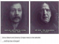 Ironic, Memes, and Soon...: Heard you were killed by a snake.  Still better...than being bested.  by a curtain.  It's ironic, really.  Sirius Black and Severus Snape meet in the afterlife  nothing has changed I don't think anything will change any time soon... 😂🔥 Double tap for magic! 💯 HarryPotter