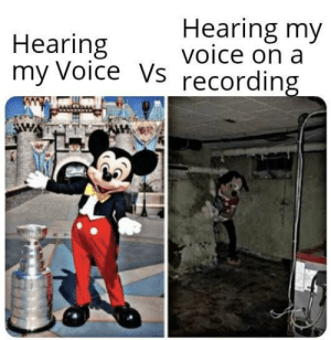 We hate it bcoz we aint used to it via /r/memes https://ift.tt/2Wf9Z7e: Hearing my  voice on a  Hearing  my Voice Vs  recording We hate it bcoz we aint used to it via /r/memes https://ift.tt/2Wf9Z7e