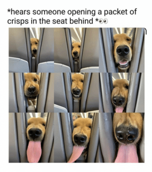 #memes #humor #funny: *hears someone opening a packet of  crisps in the seat behind * #memes #humor #funny