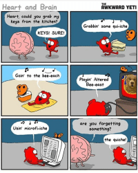 (artist: @theawkwardyeti) i've been posting really inconsistently i'm sorry y'all i'm just trying to find some good comics: Heart and Brain  Heart, could you grab my  keys from the kitchen?  KEYS! SURE!  Goin' to the bee-each  Usin' microfi-iche  THE  AWKWARD YETI  Grabbin' some qui-iche  Playin' Altered  Bee-east  are you forgetting  something?  the quiche! (artist: @theawkwardyeti) i've been posting really inconsistently i'm sorry y'all i'm just trying to find some good comics