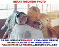 "Memes, Work, and Heart: HEART TOUCHING PHOTO  THE BULL IS TELLING THE FARMER"" WE WILL WORK HARD FOR  YOU MASTER, PLEASE DO NOT COMMIT SUICIDE ""  PLEASE SUPPORT OUR FARMERS ALONG WITH DIGITAL INDIA 🙏🙏🙏"