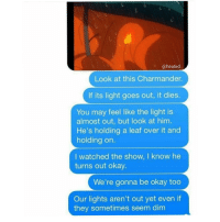 this episode😭all the real one's will remember heated yyc pokemon feels: @heated  Look at this Charmander.  If its light goes out, it dies.  You may feel like the light is  almost out, but look at him.  He's holding a leaf over it and  holding on  I watched the show, I know he  turns out okay.  We're gonna be okay too  Our lights aren't out yet even if  they sometimes seem dim this episode😭all the real one's will remember heated yyc pokemon feels