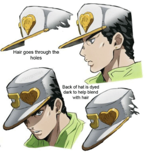 Heavily researched analysis of part 4 Jotaro's hat: Heavily researched analysis of part 4 Jotaro's hat