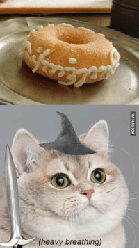Chipotle Cat: (heavy breathing)