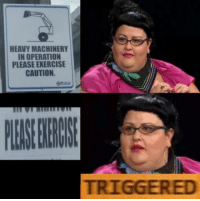 TRIGGERED: HEAVY MACHINERY  IN OPERATION  PLEASE EXERCISE  CAUTION.  TRIGGERED