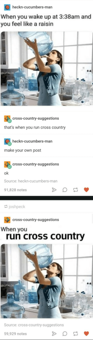 When you run cross country: heckn-cucumbers-man  When you wake up at 3:38am and  you feel like a raisin  @LUTALO8  cross-country-suggestions  that's when you run cross country  heckn-cucumbers-man  make your own post  cross-country-suggestions  ok  Source: heckn-cucumbers-man  91,828 notes  joshpeck  cross-country-suggestions  When you  run cross country  @LUTALO8  Source: cross-country-suggestions  59,929 notes When you run cross country