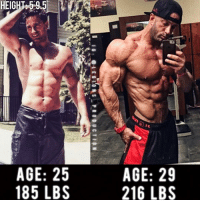 """Memes, Principal, and 25 Year Old: HEIGHT-59.5  AGE: 25  AGE: 29  185 LBS  216 LBS  9S  2B  E6  A2  16: @LEOTORS-PRODUCTION  5S  2B  :L  E5  5  G8  Al 🔥😳INCREDIBLE TRANSFORMATION! Check out: @wycked_shaun. From 25 years old to 29 years old. Weight before: 185 lbs or 84 kg. Weight after: 216 lbs or 98 kg. Thoughts? 🤔Opinions? What do you guys think? COMMENT BELOW! Athlete: @wycked_shaun. TAG SOMEONE who needs to lift! _________________ Check out our principal account: @fitness_legions for the best fitness and nutrition information! Like✅ us on Facebook👉: """"Legions Production"""" for a chance at having a shoutout. @legions_production🏆🏆🏆. . . . . . . . fitness fitnessmotivation fitnessmodel fitnessgirl fitnessjourney fitnesslife fitnessblogger fitnessfirst fitnesscoach fitnessphysique fitnesslifestyle fitgirls fitlife fitgirl fitmom fitguys fit fitfam fitjourney fitfreak fitstagram fitnessinspiration fitnessgoals fitgoals bodygoals body stronger strong health"""