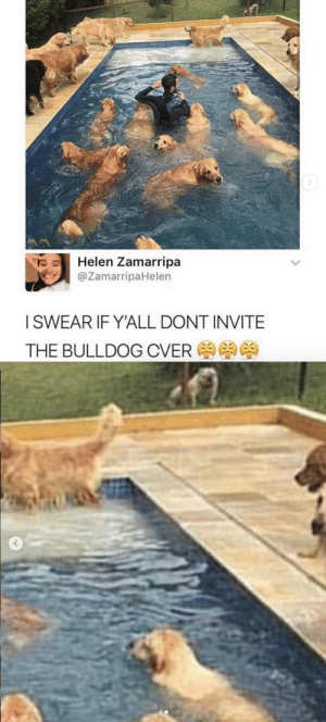 Poor baby by the fence. Let him in!tw: @zamirrapahelen: Helen Zamarripa  @ZamarripaHelen  ISWEAR IF YALL DONT INVITE  THE BULLDOG CVER Poor baby by the fence. Let him in!tw: @zamirrapahelen