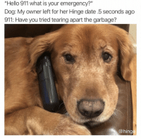"Hello, Date, and What Is: ""Hello 911 what is your emergency?""  Dog: My owner left for her Hinge date .5 seconds ago  911: Have you tried tearing apart the garbage?  @hing Hello 911. @hinge hingepartner"