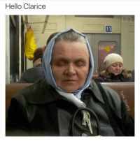 Stop that. @tank.sinatra: Hello Clarice Stop that. @tank.sinatra
