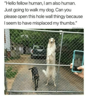 "Hello, Meme, and Dog: ""Hello fellow human, I am also human.  Just going to walk my dog. Can you  please open this hole wall thingy because  seem to have misplaced my thumbs."" Meme dump"