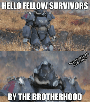 My first Fallout meme: HELLO FELLOW SURVIVORS  scorched beast  screeching*  BY THE BROTHERHOOD My first Fallout meme