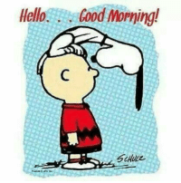 Have a wonderful day.: Hello  food Morning!  Schulz Have a wonderful day.