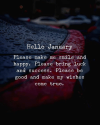 Hello, True, and Good: Hello January  Please make me smile and  happy. Please bring luck  nd Success. P Lease be  good and make my wishes  come true.