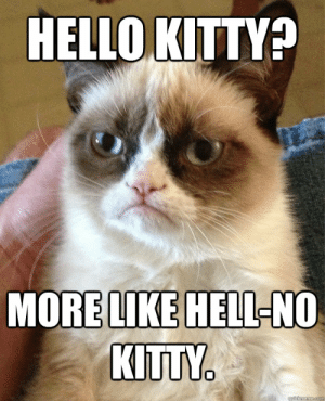 dea53955f 25+ Best Hell No Kitty Memes | Meme Memes, Hello Memes, Hello Kitty ...