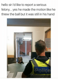 Hello, Memes, and 🤖: hello sir i'd like to report a serious  felony... yes he made the motion like he  threw the ball but it was still in his hand  ofice 🐶😂