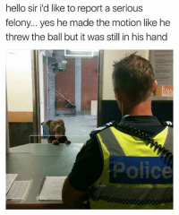 Hello, Memes, and 🤖: hello sir id like to report a serious  felony... yes he made the motion like he  threw the ball but it was still in his hand  Once