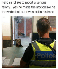 Hello, Memes, and 🤖: hello sir i'd like to reportaserious  felony... yes he made the motion like he  threw the ball but it was still in his hand  ofice